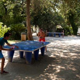 Tables de tennis