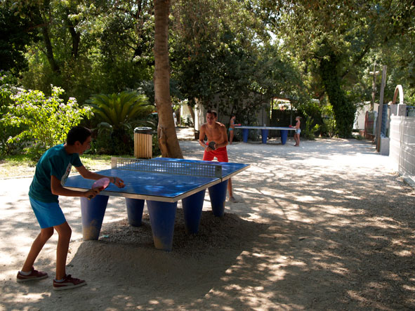 Ping-Pong Tables
